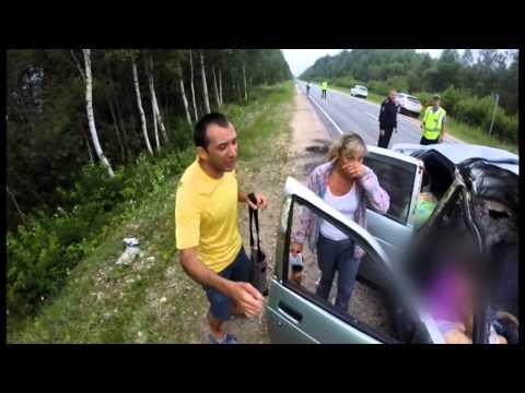 ДТП лось убил пассажирку 10-ки Оричевский. Место происшествия 29.06.2015