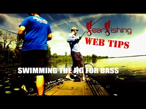 FearFishing Web Tips ~ Swimming the Jig