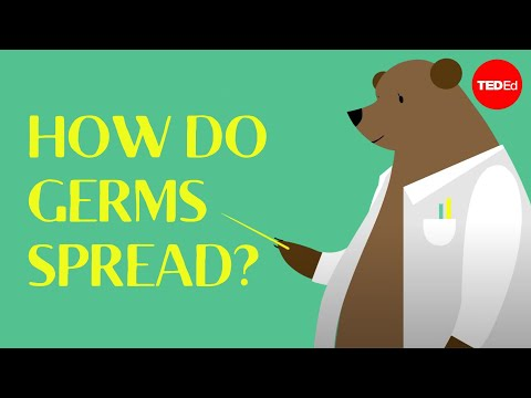 How Do Germs Spread (and Why Do They Make Us Sick)? - Yannay Khaikin And Nicole Mideo video