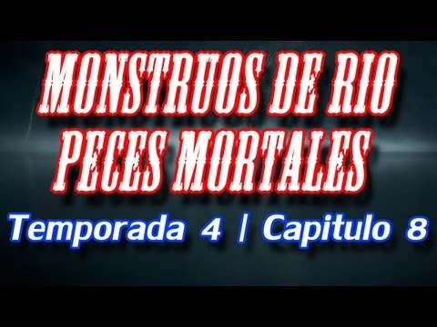Monstruos de Rio | Peces Mortales | Temporada 4 | Capitulo 8 (ESPAÑOL LATINO)