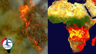 Africa is Burning Right Now More than the Amazon and Nobody Even Knows