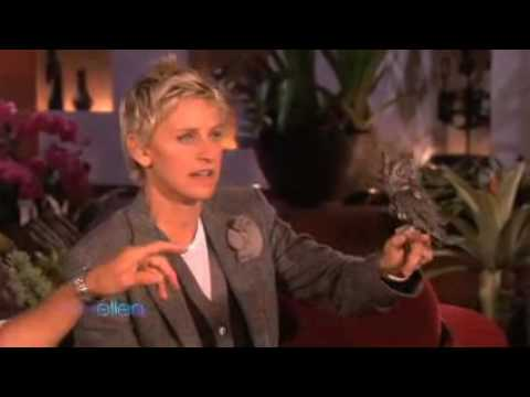 Amazing Animals with Jack Hanna on Ellen