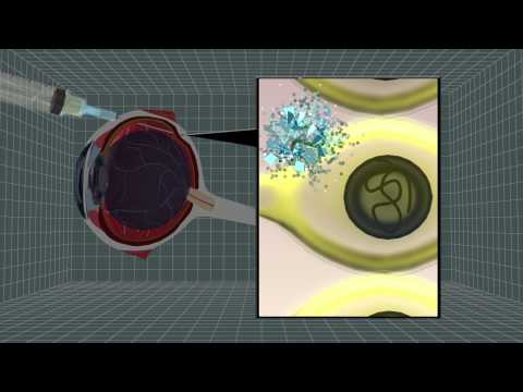 Gene therapy restores rare genetic blindness