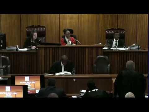 Oscar Pistorius Trial: Thursday 3 July 2014, Session 4