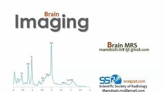 MR Spectroscopy in the Brain - Prof. Dr. Mamdouh Mahhfouz