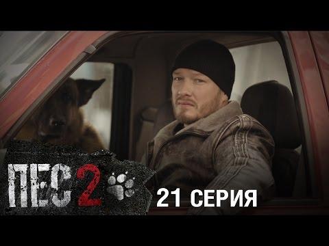 Сериал Пес - 2 сезон - 21 серия - ПРЕМЬЕРА