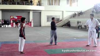 Kyokushin Whitebelt vs Jeet Kune Do ?