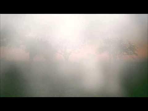 Klaxons - Silver Forest