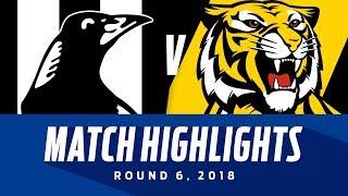 Match Highlights: Collingwood v Richmond   Round 6, 2018   AFL