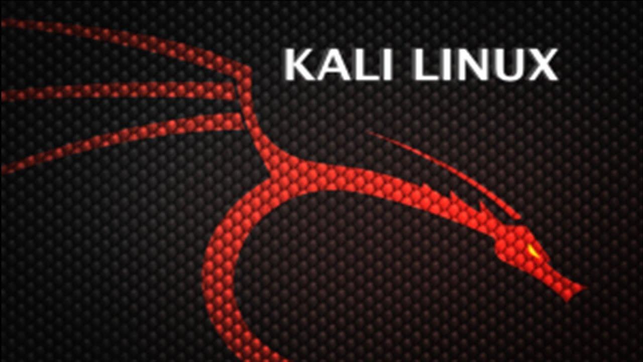 wallpaper kali linux