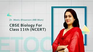 CBSE video lectures of Photosynthesis in Higher Plants by Dr  Meetu Bhawnani (MB Mam)