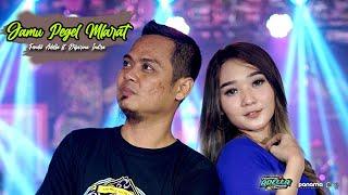 Download lagu Jamu Pegel Mlarat - Fendik Adella ft Difarina Indra - OM ADELLA