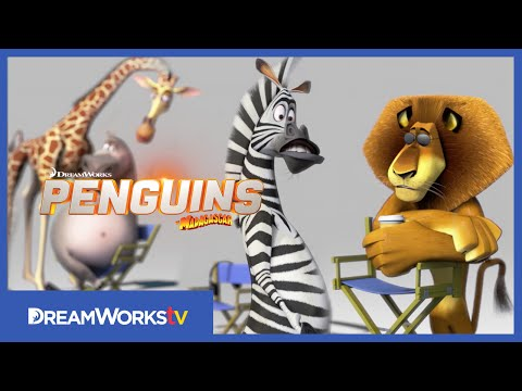 Madagascar Animals Gossip About The Penguins | Penguins Of Madagascar video