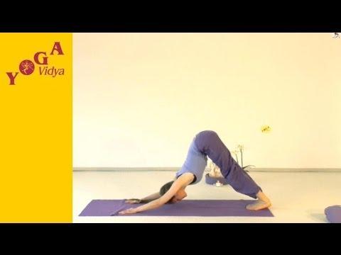 Yogastunde: Bhakti Yogastunde mit Sukadev und Aruna