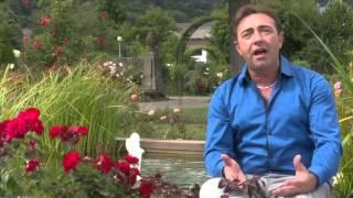 Alain Wilt - Rote Rosen Trocknen Traenen - OFFIZIELLES VIDEO