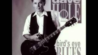 Dave Hole - Blues Is The Truth