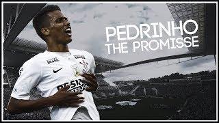 Pedrinho ► The Promisse | Ultimate Skills & Goals | 2018 | HD