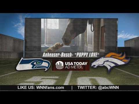 Super Bowl 2014: 'Puppy Love' is Top TV Ad