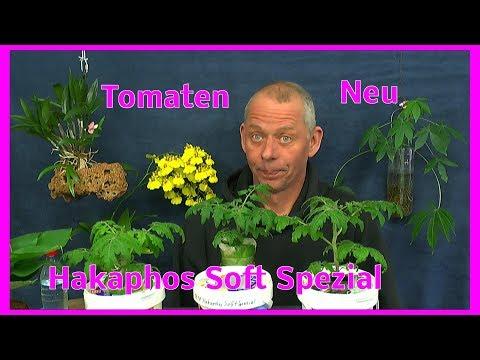 Tomaten / Neuer Dünger für die Hydroponic IKEA VÄXER Hakaphos Soft Spezial