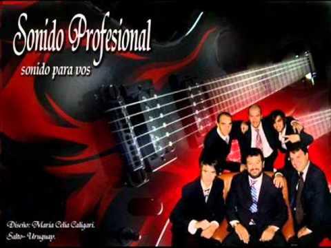 Sonido Profesional - Ni Contigo Ni Sin Ti [ Agosto 2011 ]