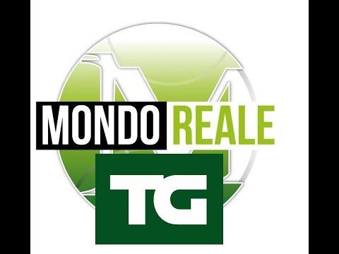 TG MONDOREALE 1 NOVEMBRE 2017