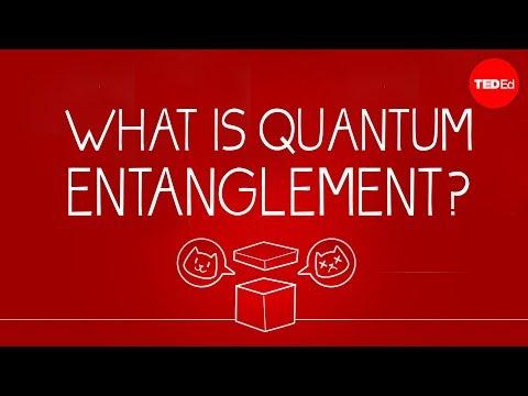 Download Lagu What can Schrödinger's cat teach us about quantum mechanics? - Josh Samani MP3 Free