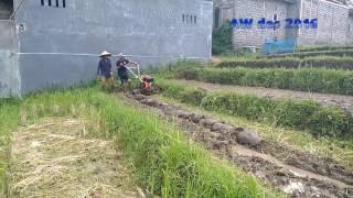 Diesel tiller/traktor mini/traktor kebun