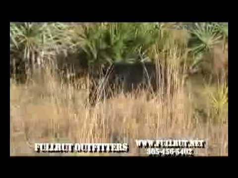 FULLRUTOUTFITTERS FLORIDA HOG HUNT NEW2