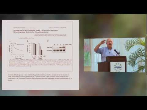 Vaccine Safety Conference Session 20 - Dr. Richard Deth, PhD