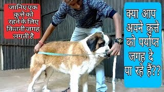 Know how much minimum space a dog needs to live (Hindi)| Doggies Squad |