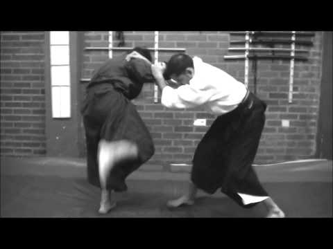 Ogawa Ryu Jujutsu - Chicago Daihyousha training in Valencia - Spain Image 1