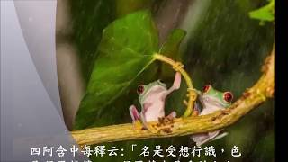 Download Lagu 又是細雨 You Shi Xi Yu  二胡演奏 陳亮君 Gratis STAFABAND