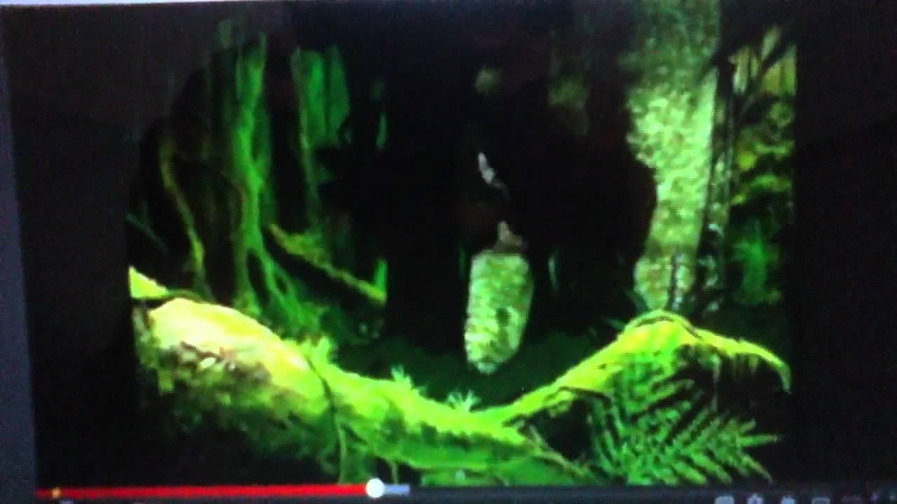 Dinosaur king season 1 episode 4 1 2 youtube