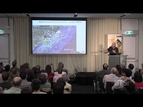 UTS Science in Focus: Great White Sharks. Part 1