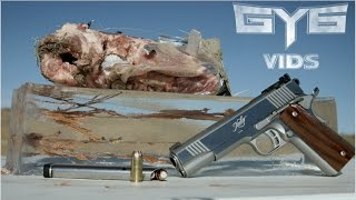 Terminal Shock 45acp Ammo vs. GEL & RIBS