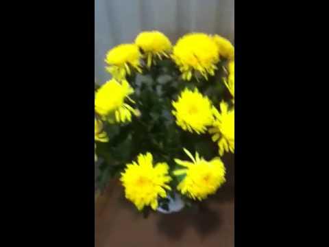 kremdan gul yasash video