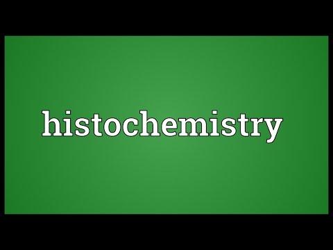 Header of histochemistry