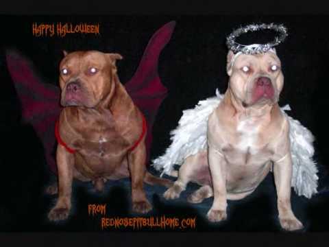 Bull Halloween Costume