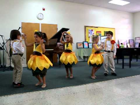 Sunshine Dancers - Delphi Academy of Florida