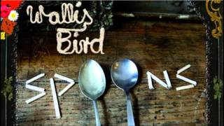 Watch Wallis Bird Slow Down video