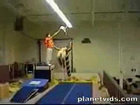 Ninja Man! video