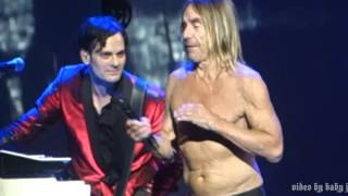 Watch Iggy Pop Fall In Love With Me video
