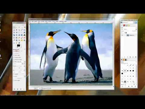 The Photo Editing Programs Paint.net, Gimp, and Paint.  Edit Your Photos For Free!