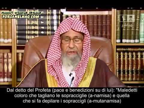 E permesso depilarsi le sopracciglia ? Cheikh Fawzan