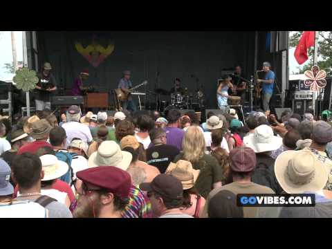 "Steve Kimock & Bernie Worrell perform ""Sing A Simple Song"" at Gathering of the Vibes Music Festival"