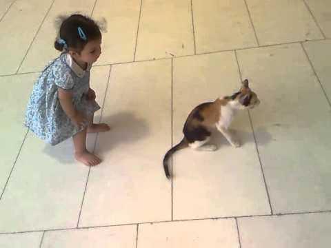 مسكينه عضتها القطوة