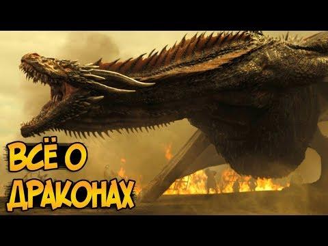Драконы из сериала Игра Престолов (биология, питание, появление, отношение к человеку)