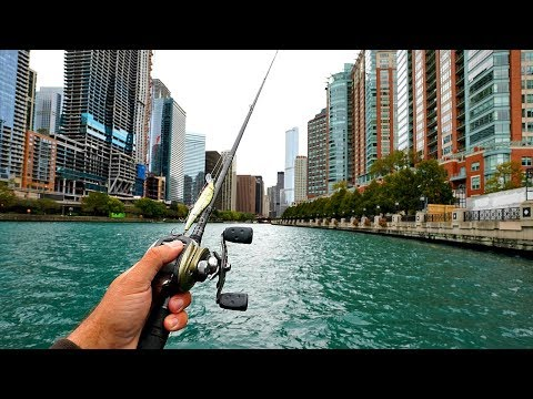 URBAN River Bass Fishing in Downtown Chicago!! *RARE CATCH*