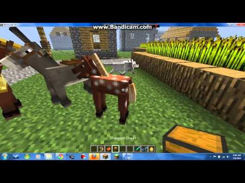 Minecraft-1.6.1 Horse Review