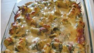 Creamy Chicken/Spinach/Pasta Bake! YUMMY!